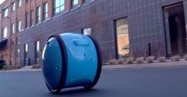 Esta rueda llamada Gita es un robot mayordomo